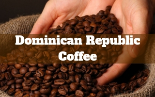 Best Dominican Republic Coffee