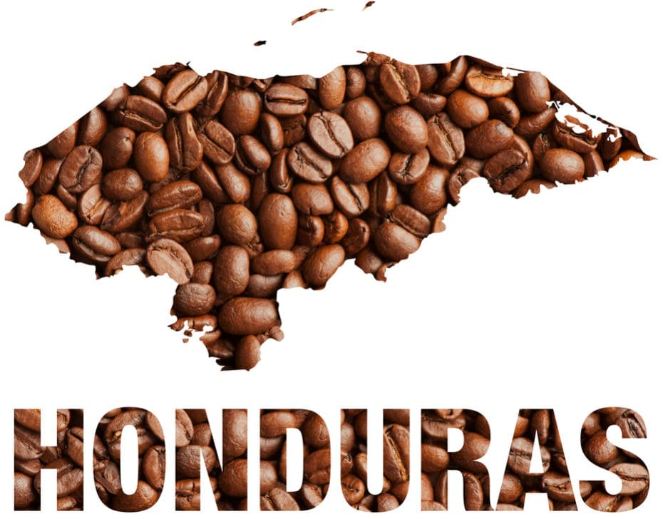 recommended honduras coffee beans