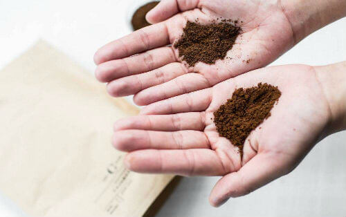 how long do coffee grounds last