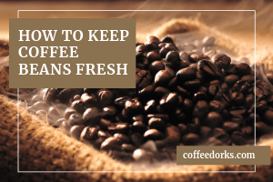 How to Keep Coffee Beans Fresh