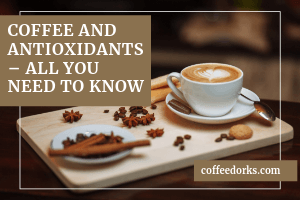 Coffee and Antioxidants – All You Need To Know